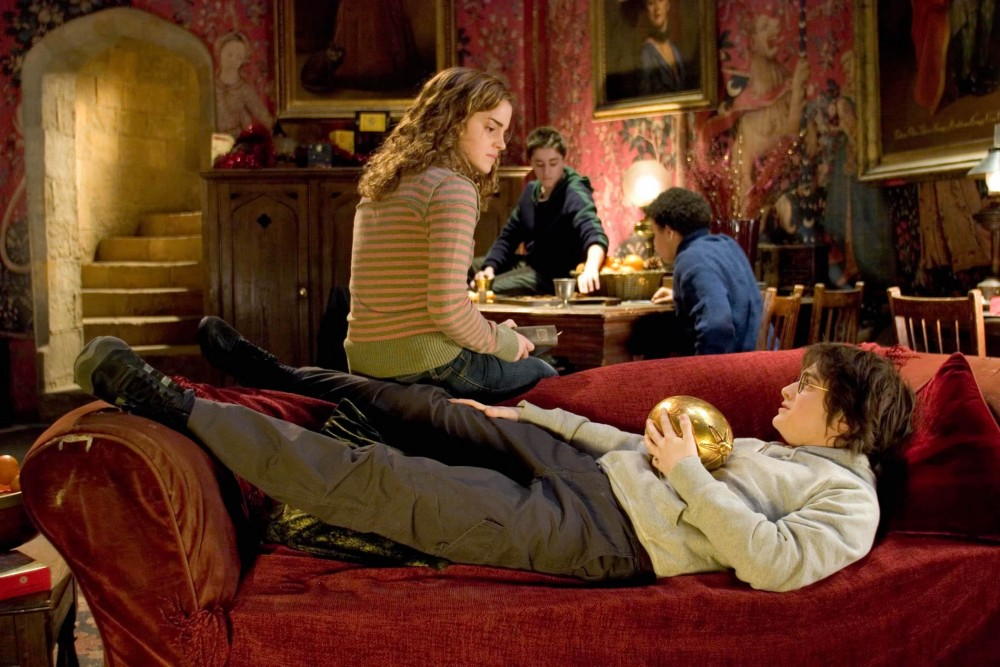 Hermione and Harry in the Gryffindor common room