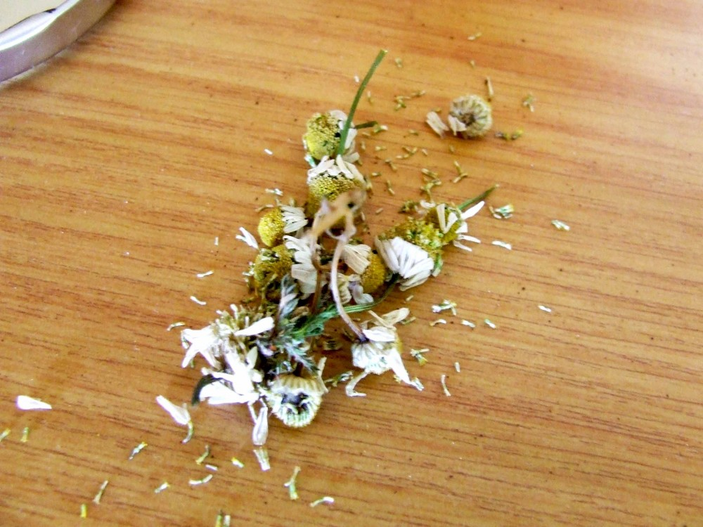Dried camomile