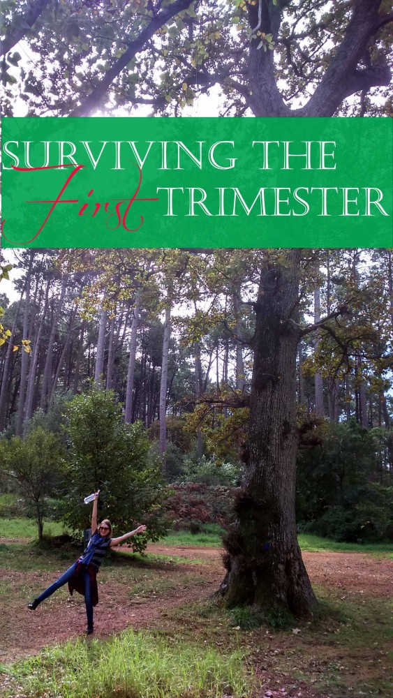 Surviving The First Trimester of pregnancy